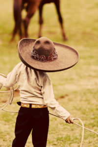 Recognition Rodeo: More Insights From The Online Community thumbnail
