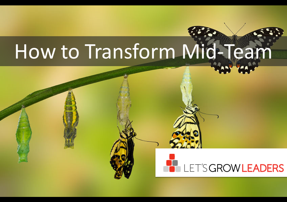 How to Transform Mid-Team