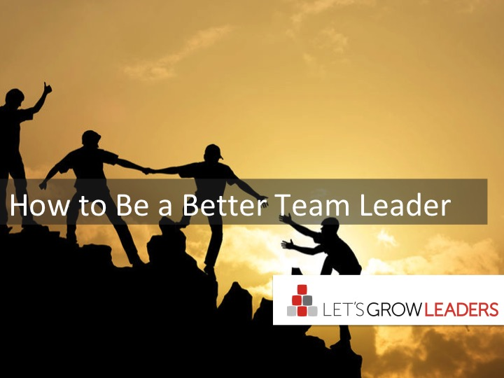 How To Be A Better Team Leader: A Case Study
