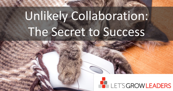 Unlikely Collaboration-The Secret to Success