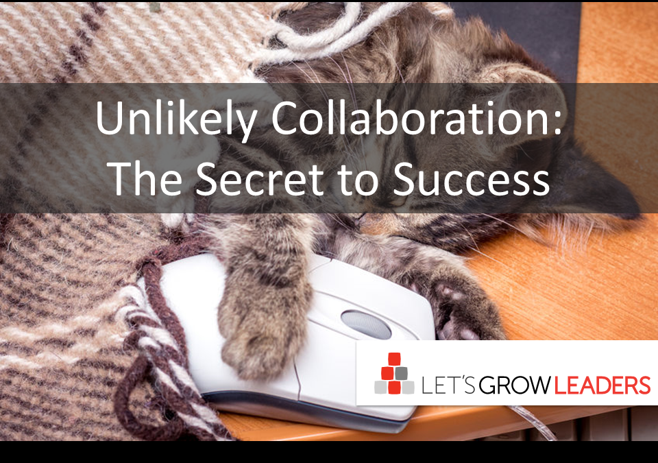 Unlikely Collaboration: The Secret To Success