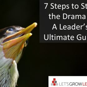 stop the drama - a leaders guide