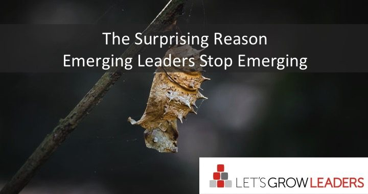 the suprising reason emerging leaders stop emerging