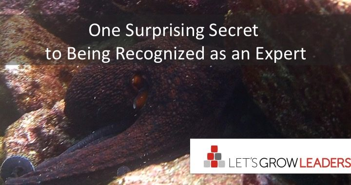 One Surprising Secret to Being Respected as an Expert