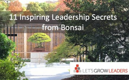 11 inspiring leadership secrets from bonsai