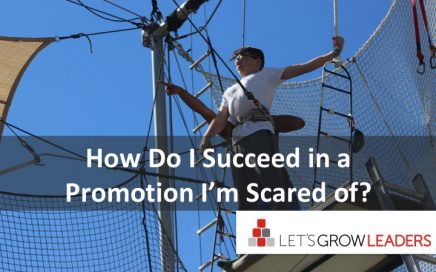 how do I succeed in a promotion I'm scared of?