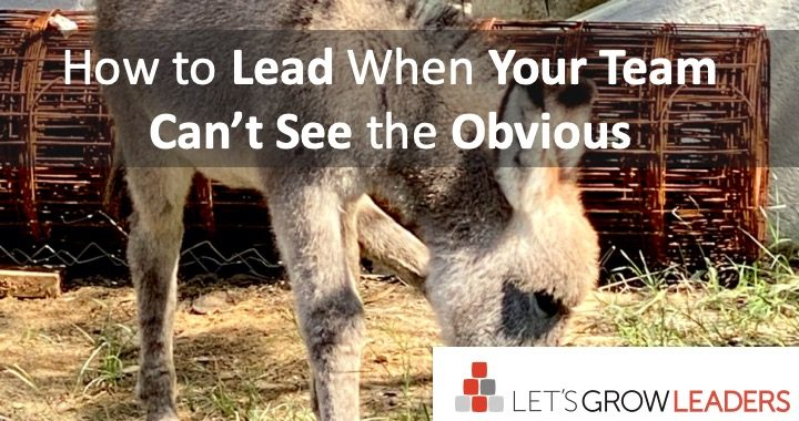 how to lead when your team can't see the obvious