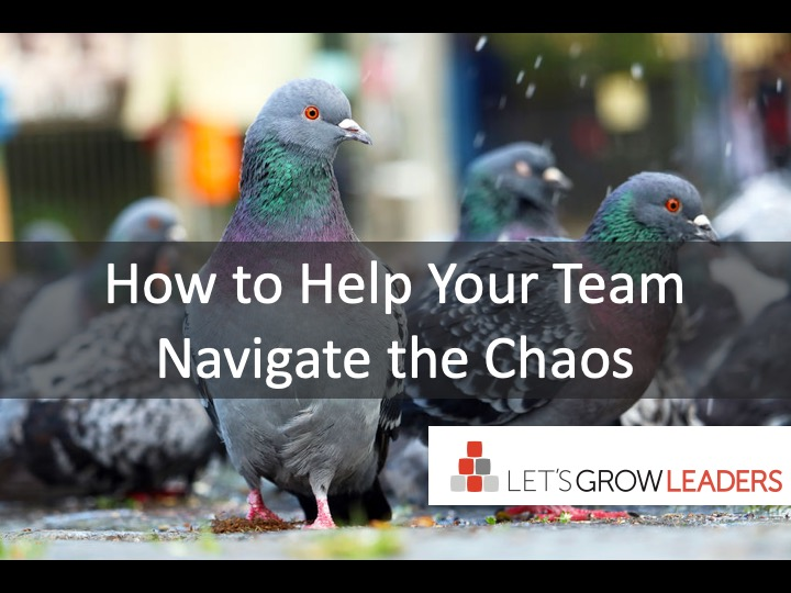 How to Help Your Team Navigate the Chaos
