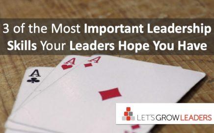 3 Most Important Leadership Skills