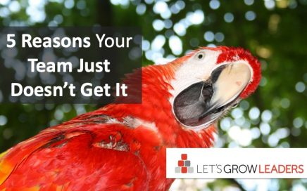 5 Reasons Your Team Just Doesn't Get It
