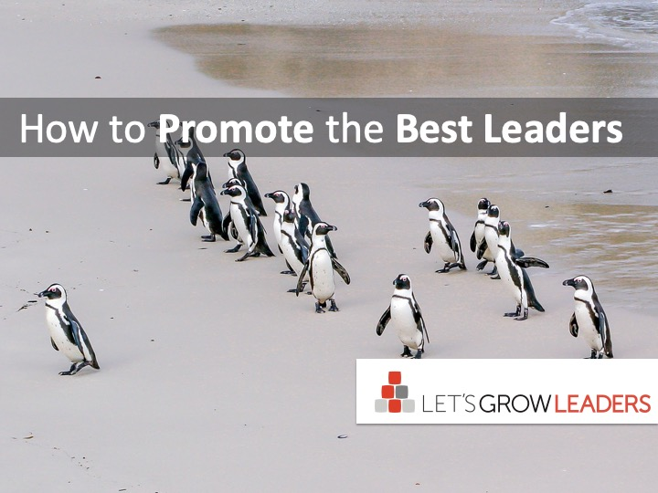 how to promote the best leaders