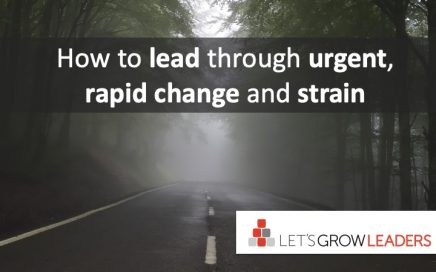 how to lead rapid change