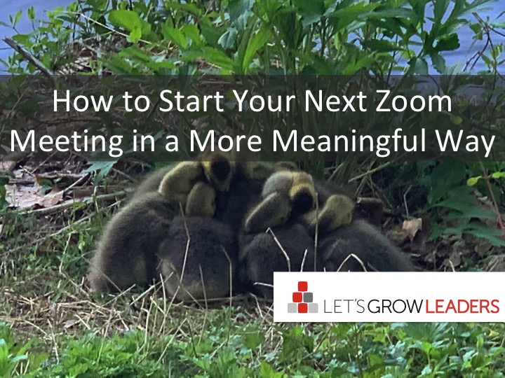 Improve Your Zoom Meeting Experience