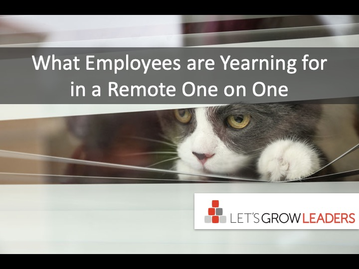Remote One-on-Ones: What Employees are Yearning For Most