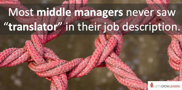 middle managers are translators