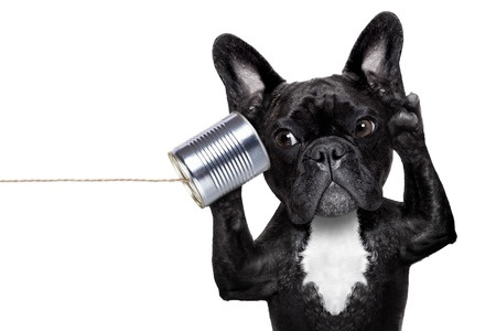 """""""I'm Not Listening!: The Best Way to Get Your Team to Hear Your Feedback"""