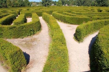 5 Secrets To Effective Decision Making