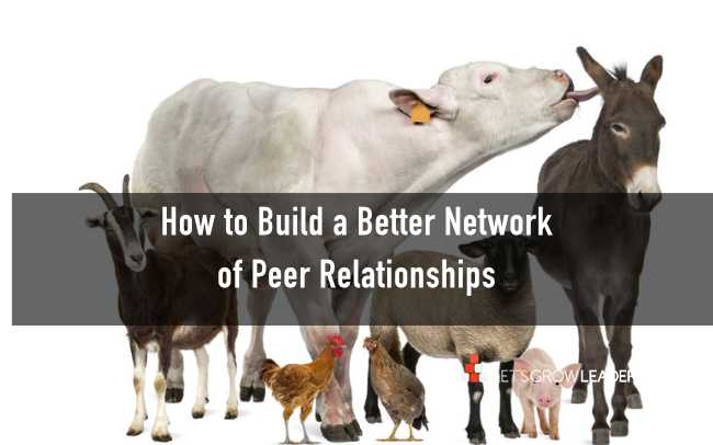 how to build a better network of peer relationships